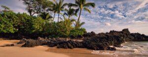 Hawaii beach sand and water