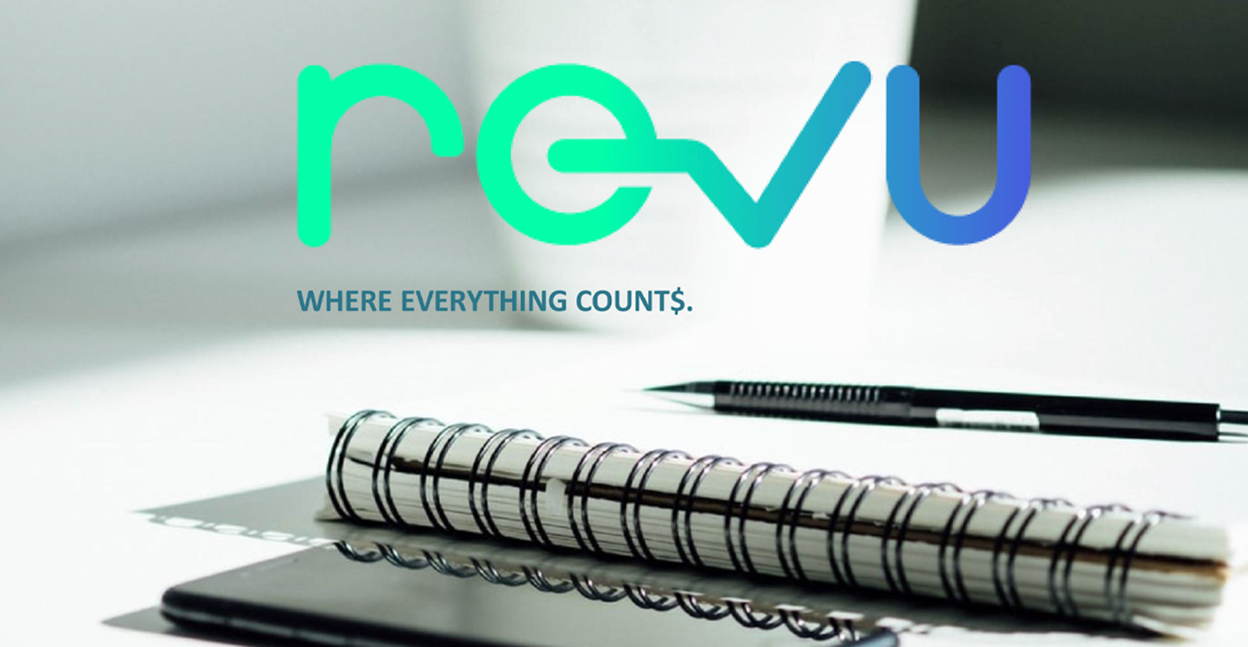 RevuBooks Accounting Services image